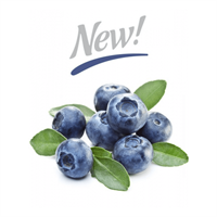 Capella Silverline Blueberry Extra Flavor