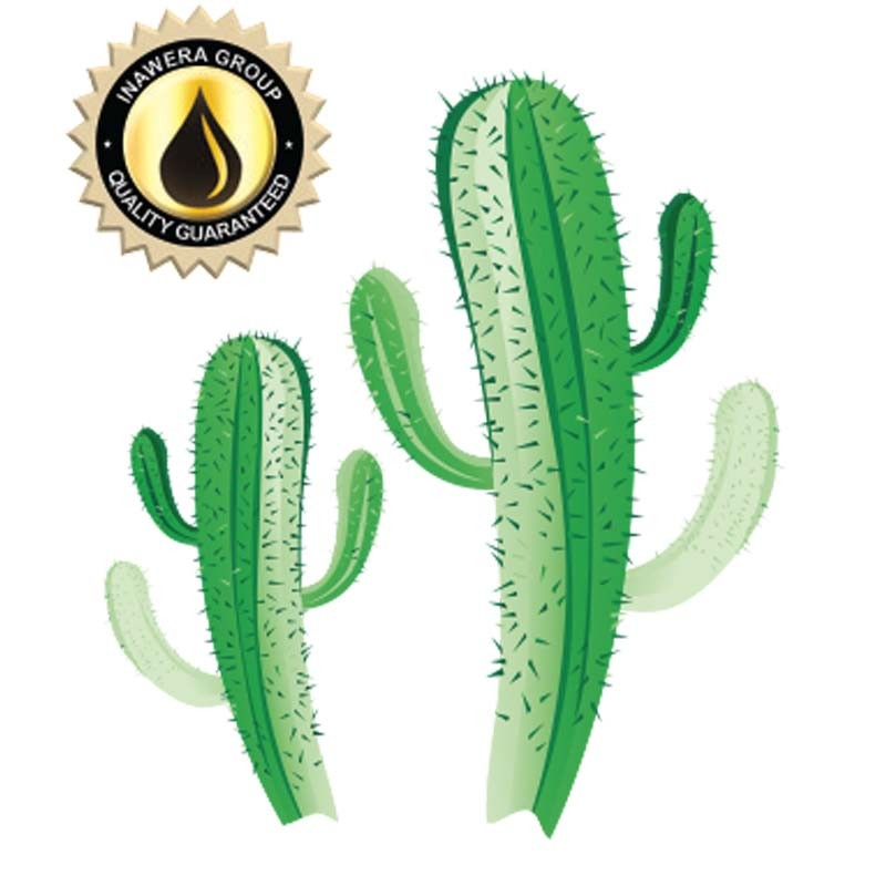 Inawera Cactus Flavor